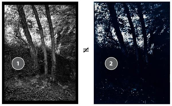 Cyanotype_custom_curve-1