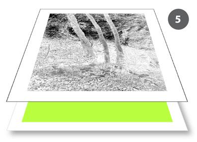 Cyanotype_negatives-2
